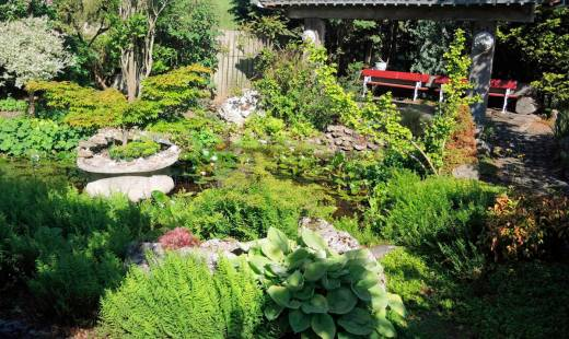 planten.tuinhierdeinze